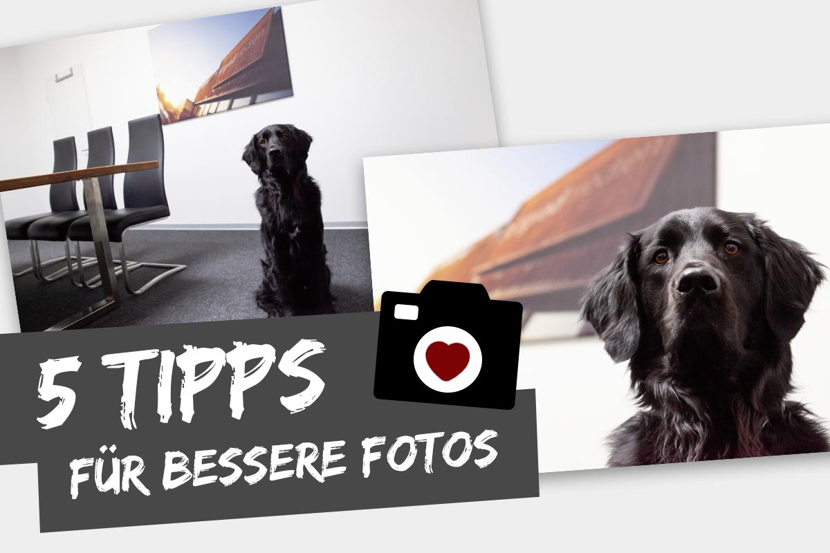 5 Tipps für bessere Fotos